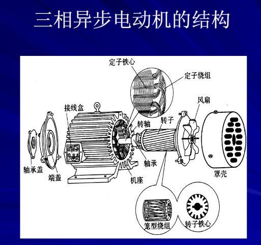 三相异步电动机总的来说,就是能够将电能转换为机械能的机电设备。三相异步电动机有着结构简单,坚固耐用,价格便宜的特点,几乎能应用在所有的生产行业中,起重设备,传送设备,机床,水泵,风机,灌装机械等都可以见到三相异步电动机的身影。下面我们简单介绍下三相异步电动机的一些基本常识。